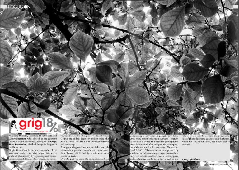 pagina-grigio