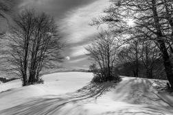 aperitivo-fotografico-grigio18